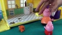 Peppa Pig en français. Peppa Pig rencontre l´écureuil. Peppa aide à l´écureuil de trouver