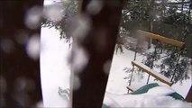 Blizzard + Dog + Action Cam = Legendary Snow Day!