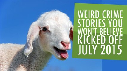 Weird Crime Stories you won't believe kicked off July 2015