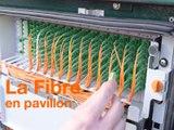 La Fibre – Le raccordement à la Fibre d'un pavillon – Orange
