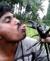 Il place sa langue dans la pince dun crabe