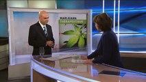 Effets bénéfique du cannabis: douleur nausée asthme glaucome épilepsie Parkinson migraine tourette