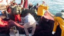 Calayri chlihat 08/01/2013 plage mehdiya peche sardine