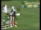 Cheval equitation le pire cavalier du monde