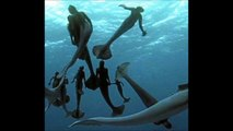 IMAGENES SIRENAS REALES : Recreacion imagenes sirenas reales Discovery Channel documental