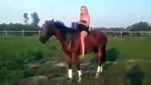 Sexy Girl fallen of Horse