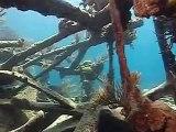 PADI Scuba Diving Lessons:  PADI Wreck Diver Course