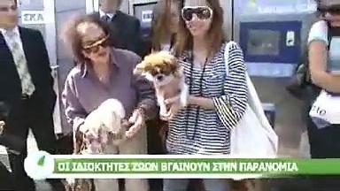 Greek Animal Welfare