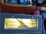 Valise Aquarium Décor cichlides Africain AquaPotier