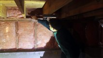 Open Cell vs. Closed Cell Spray Foam -- Island Basement Systems on the Job