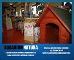 Aquarium Natura, il grande negozio di animali e acquari a Buonconvento (SIENA)