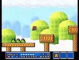 Super Mario Brothers All-Stars - Super Mario 3 Bloopers