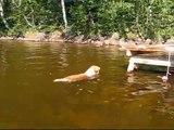 Mudi Muru uimassa - Mudi Muru swimming