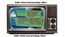 Tom And Jerry Cat and Dupli cat 1966 Best Cartoons