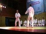 Kampfsport-Show: Judo, Aikido & Jujutsu (2008) [Teil 1/2 ]