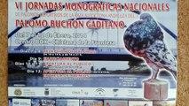 Concurso Monografico del Buchon Gaditano en chiclana 2014 Juan Cortes