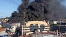 Un incendie entraîne plusieurs explosions à Olten en Suisse