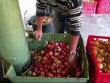 Boussières : atelier de pasteurisation jus de pomme