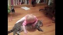 Laugh - Animali e bambini  Video divertente di Bambini, cani, gatti
