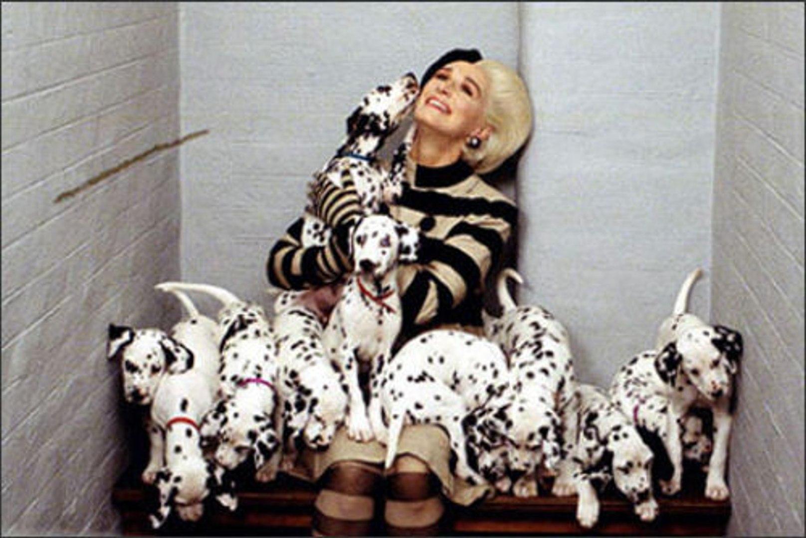 102 Dalmatians 2000 Full Movie Video Dailymotion