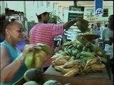 Cooperativas no agropecuarias comienzan a funcionar en Cuba