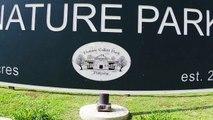 Maple Avenue Park Terre Haute, Indiana