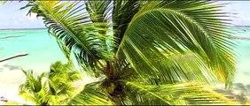Villa Boubou de luxe filmée par des drones au dessus du Lagon de Guadeloupe
