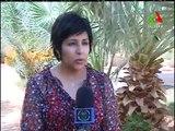 Algérie: les énergies renouvelables, choix efficace, rentable et qui préservera l'environnement
