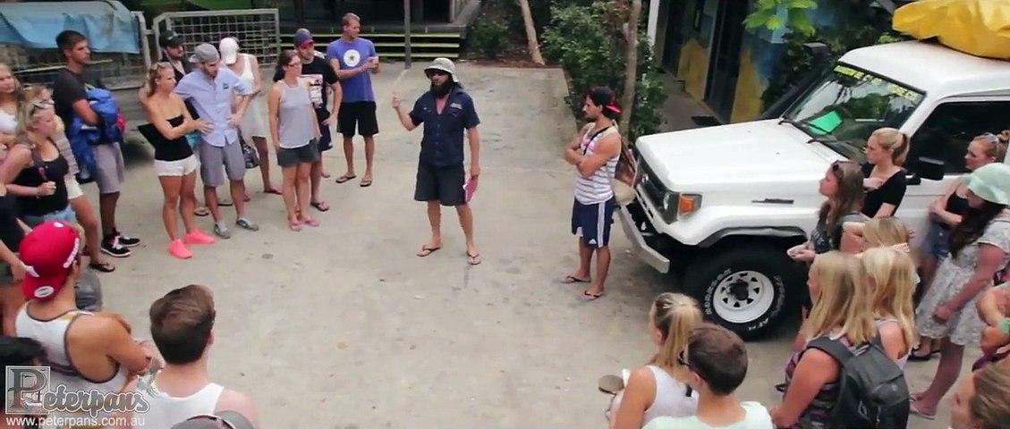 Fraser Island - Dingo's Tag Along Safari - Peterpans Adventure Travel