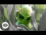 Do Crops Circles Prove Aliens Exist?