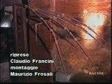 Festival delle Invenzioni e delle Genialità tenutosi nel 1996 a Vinci (FI)