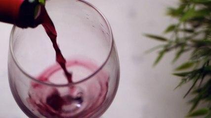 Brown Bag Wine Tasting Sneak Peek