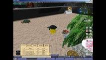 Mein neues Schildkröten Gehege.HD