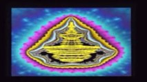 Ananda Bosman   Hadronic Mechanics & Entheogens 12of22