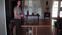 Bamboo eco-friendly pet gate reviewed by dog trainer Amy Robinson