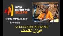 Invitées d'Akim : la chanteuse Jennifer Grout & le misicien Aziz Daouni LA COULEURS DES MOTS - 2015.07.22