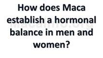 How does Maca establish a hormonal balance in men and women? (Maca Question Video)