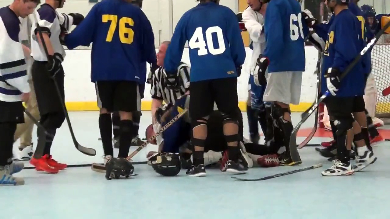 Ball Hockey Fights – Bench Clearing Ball Hockey Brawls – TriCity Seekers vs. nWo (Deluxe Version)