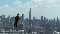 Headbanging Man Flies Over NYC In The Most WTF Video