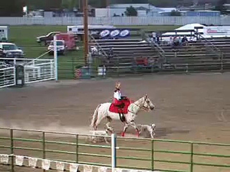 Dalmatian/Appaloosa Demonstration at Horse Extravaganza