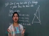 Class 9th-Maths Online Coaching Video Lectures-Triangles