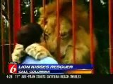 Lion Hug, with Music by The Peace & Freedom Band
