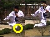 Taekwondo Revolution of kicking jumping side kick