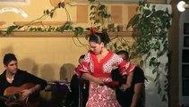 839 El flamenco, Patrimonio Inmaterial Cultural de la Humanidad. Academia de Araceli  Arias.