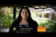 Video Canoterapia. Video Perros Que Ayudan. Video Masterdog. Video Terapias  Alternativas