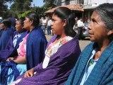 Domestic Violence in Mexico (La violencia domestica en Mexico)