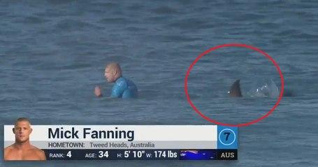 Mick Fanning Shark Attack LIVE (Full Video) 2015
