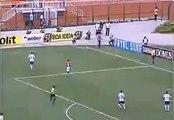 Roberto Carlos Corner Kick Goal