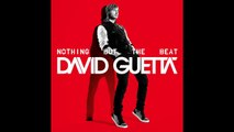David Guetta - The Alphabeat (NOTHING BUT THE BEAT) New Album 2011