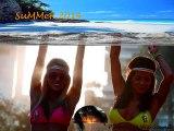 Top Hits Dancefloor SUMMER 2014 [HD]- HITS MIX CLUB